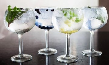 Gin Tasting Evening with Paul Quinn